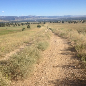 Coalton Trail
